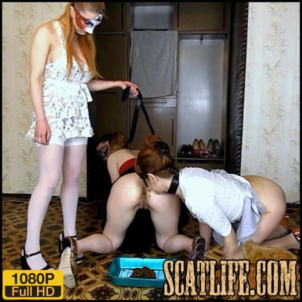 Hd 1080p – Alice has two slaves on a leash – ModelNatalya94 – Groups, Toilet Slavery